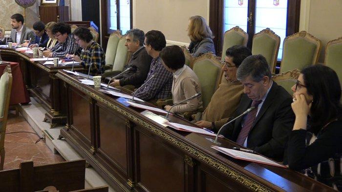 Pleno Diputacion (Febrero 2020)
