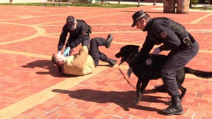 Exhibicion Vecinos Perros Policia Local Coronavirus San Agustin (Marzo 2020)