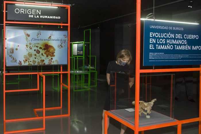 la ubu participa en una exposición nacional en a acoruña sobre investigación con su proyecto evolución del cuerpo en los humanos