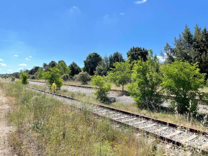 tren directo burgos - madrid