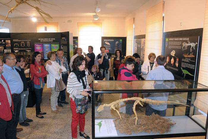 Visitantes Museo d Dinosaurios_opt