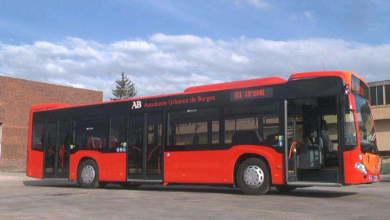autobuses 2