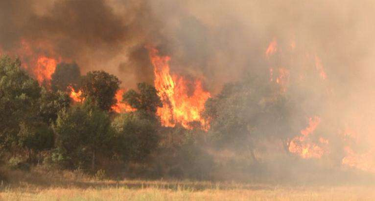 incendios Leon - Castilla y León